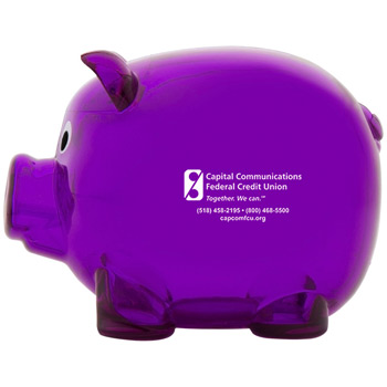 Mr. Piggy Bank